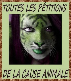 Pétitions Cause Animale
